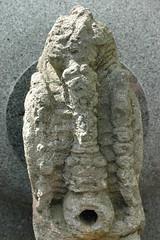 trilobite(0.0), fossil(1.0),