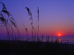 Long Bay, South Carolina