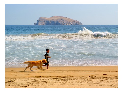 mar playa olas
