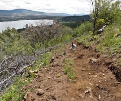 Ridgeview Trail -  Klamath Falls Mountain Bike Trails