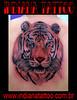 tattoo tigre hola somo indiana