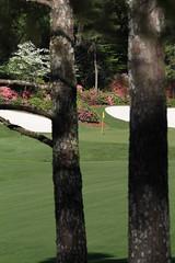 Augusta Pines Golf Club, Augusta Pines Course