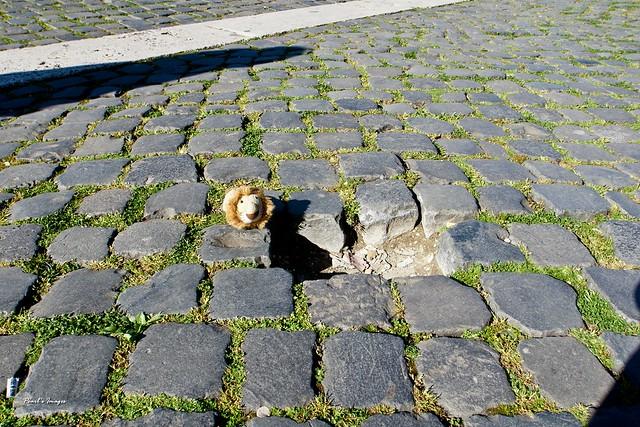 羅馬的路面是仿古鋪石塊