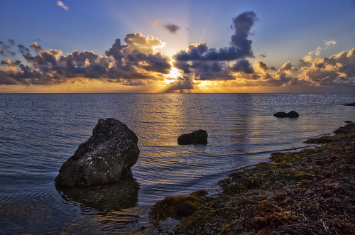 sunrise miami blackpoint 305