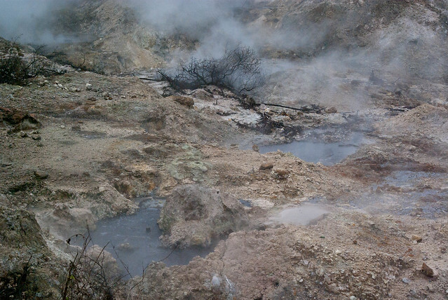 Boiling pools at the Sulphur Springs