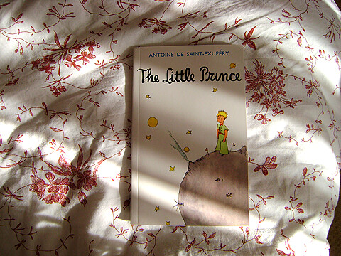 the little prince by antoine de saint-exupéry book report To and summary of the novella the little prince by antoine de saint-exupéry   sold worldwide, making it one of the best-selling books in publishing history.