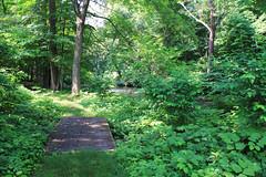 The Patriots Path Near Frelinghuysen Arboretum