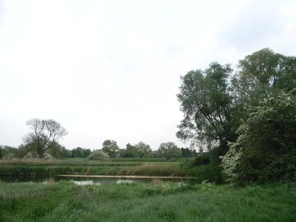 Hawthorn Huntingdon Circular