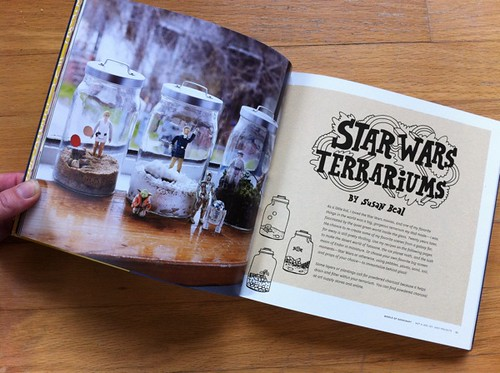 Star Wars Terrariums