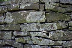 Tex#1 ~ Stone Wall - BG 75
