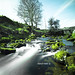 Dartmoor Stream | Ashley Kent ©