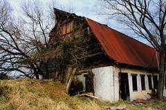Abandoned Barn, Gaithersburg, MD