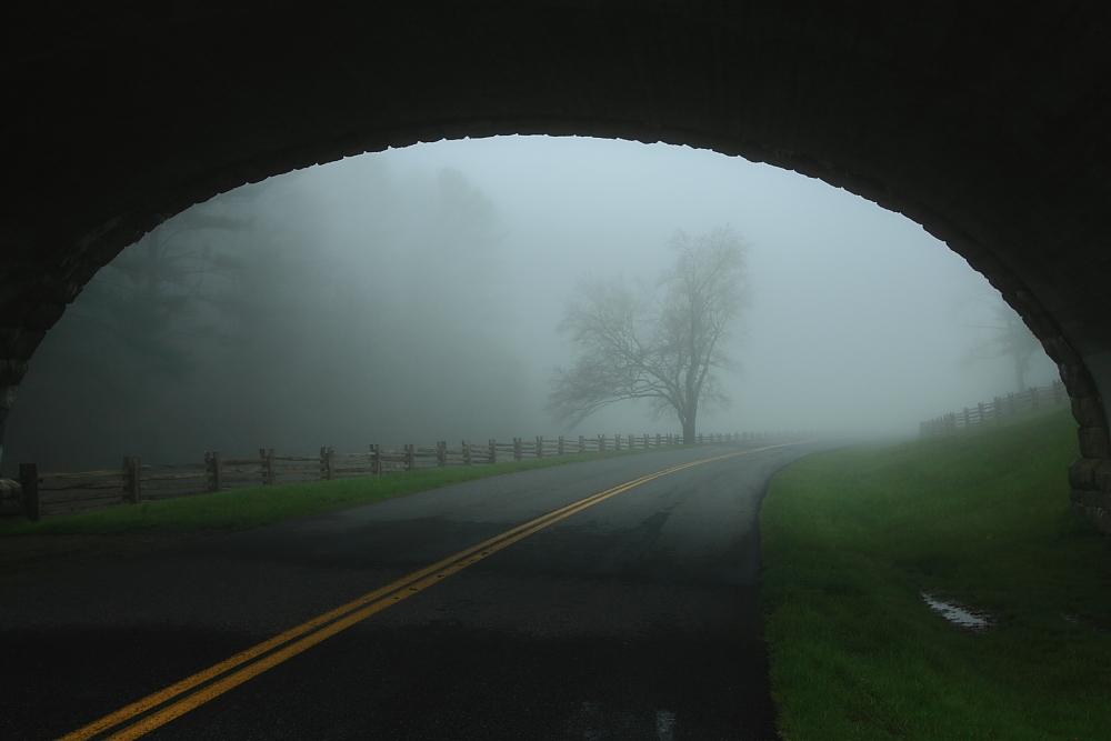 IMAGE: http://farm6.staticflickr.com/5108/5604076117_a982b699d3_o.jpg