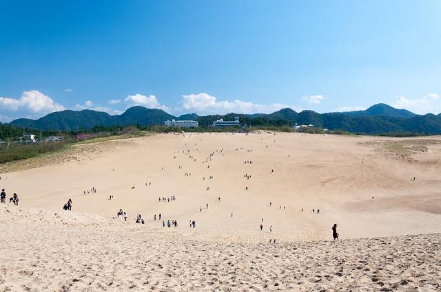 鳥取砂丘 馬の背からの景色