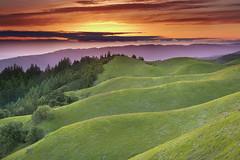 Faultlines - Mt. Tamalpais, Marin County, California