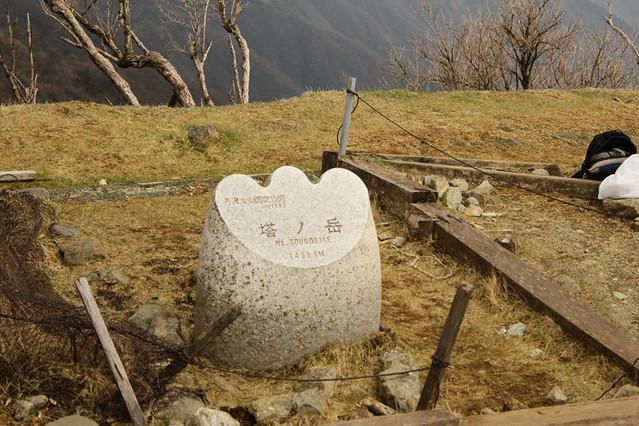 20110429_塔ノ岳(表尾根)_0044