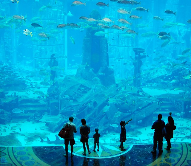 Aquarium Atlantis Dubai Flickr Photo Sharing