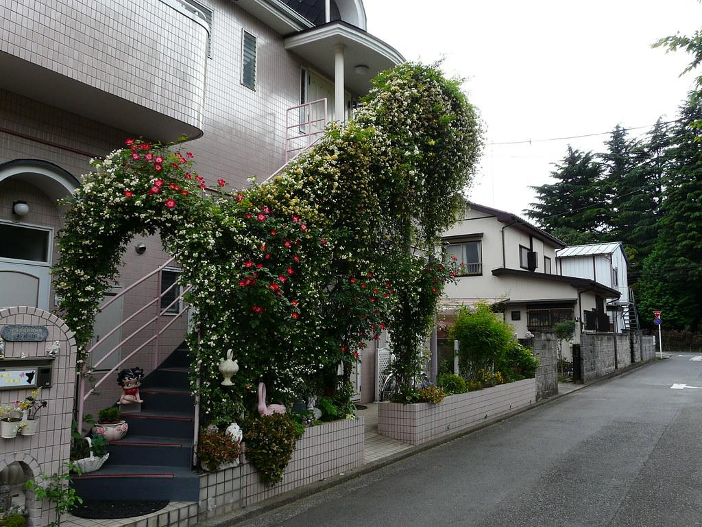 Floral Stairway