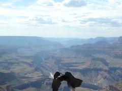 mountain, valley, mountain range, plateau, wilderness, flight, mountainous landforms,