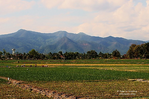 "thailand countryside chiangmai pwr เชียงใหม่ ประเทศไทย maewang earthasia totallythailand แม่วาง ชนบท ""canoneos350d"" ""efs1855mm"" ""13556is"" doilopete"
