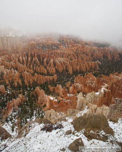 Bryce in the fog 2