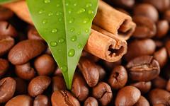 Coffee beans and cinnamon