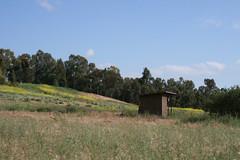 Enclosed adobe ruins