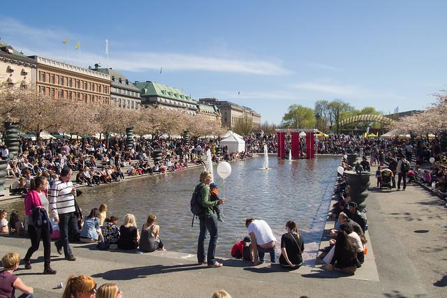 sakura in stockholm 03