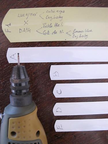 Etiquettes pour le jardin - Garden labels