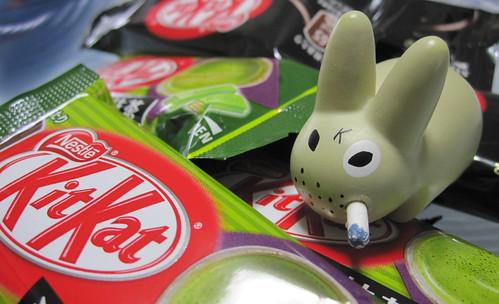 Kit Kat - 2011.4.5 (50/365) - 無料写真検索fotoq