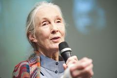 Jane Goodall Visits the World Bank