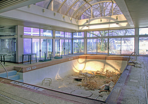 indoor pool at the purple hotel