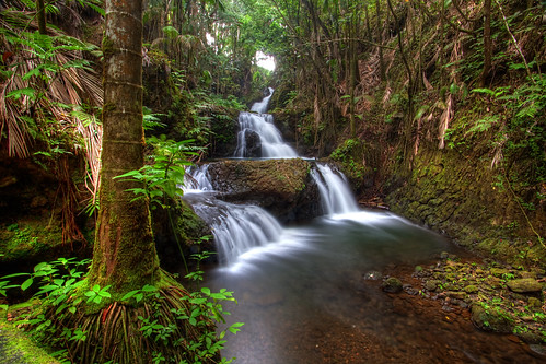 river hawaii waterfall tropical bigisland hawaiitropicalbotanicalgarden onomeabay