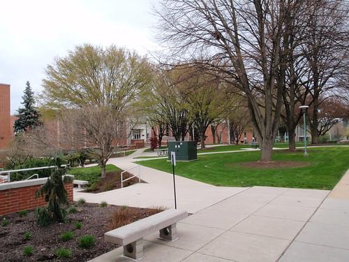 York College Campus