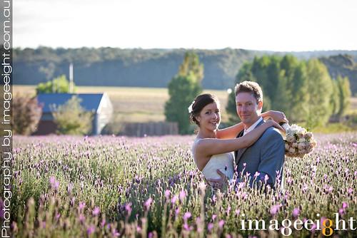 autumn wedding sunset restaurant groom bride photographer image lavender australia melbourne victoria shaun eight daylesford sault mckenna