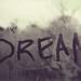 dream. by rachelnwonderland