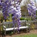 Small photo of New Albany Garden Club, Mississippi