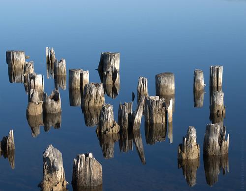 reflection water sunrise nikon decay pilings boynecity lakecharlevoix d60