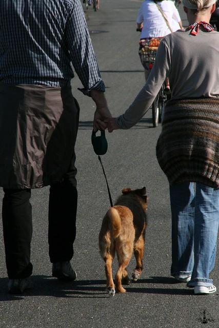 Mit dem Hund nach Cuxhaven
