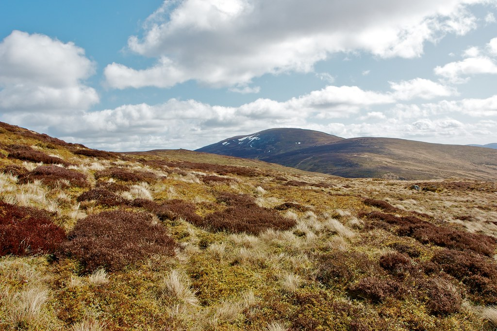 Mullachdubh and Morven