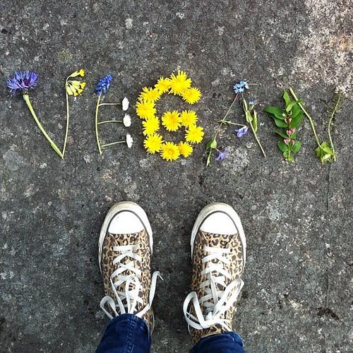 Att vara vegan är lite som att vara förälskad. Glädjen i de vardagliga små tingen. Lyckan i att upptäcka nya saker och smaker, att resa och finna, dokumentera fina minnen. Pirret i magen för att allt känns så rätt. Nöjet i att slita sönder namnet, det vac