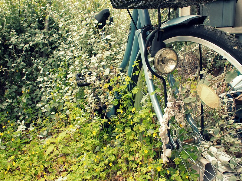 Green over bicycle