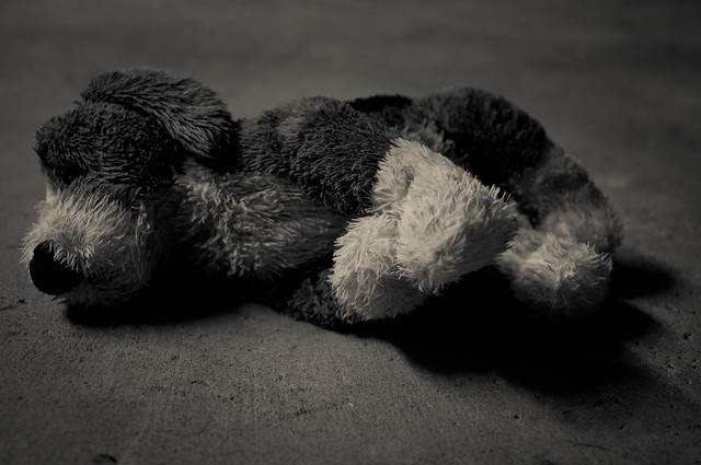 Dead Stuffed Dog