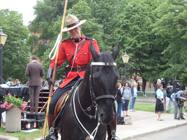 an rcmp officer looking sharp on her horse flickr
