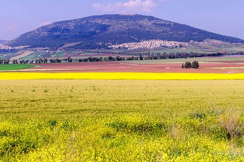 israel mideast hagilboa northdistrict