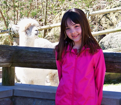 Julia and the llama