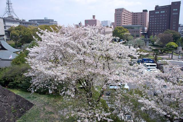 2012-kyushu-544