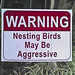 Signs of the Times: WARNING! Nesting Birds may be Aggressive