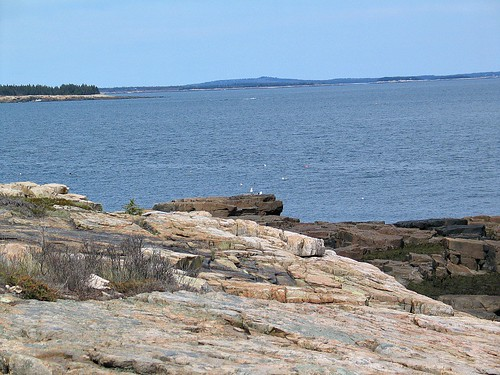 Acadia National Park 2
