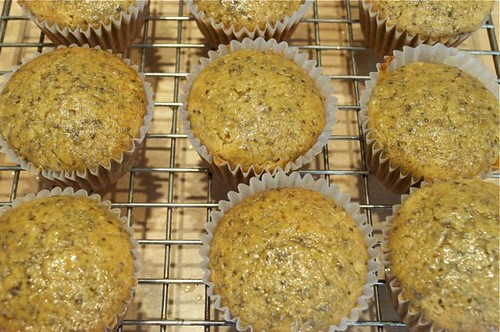 muffins/lemon chia seed 19